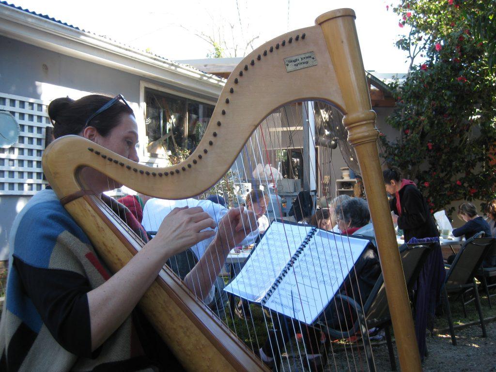 Clay Teacup Making Workshop Harpist